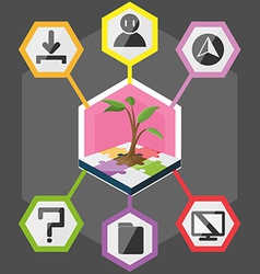 Tree Hexagon Modern Info Graphic Color full vector image vector image