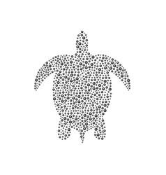 turtle in black design vector image
