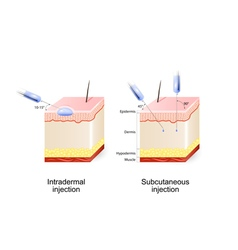 Intradermal and subcutaneous injection vector