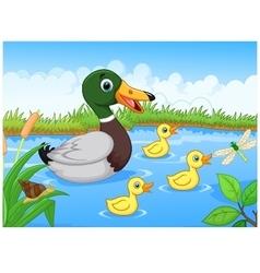 Cartoon duck vector