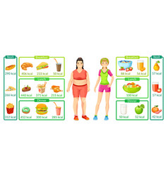 colorful weight loss infographics vector image