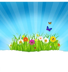 Green Grass With Flowers And Paper vector image
