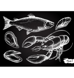 Hand drawn seafood chalkboard set vector