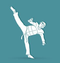 Taekwondo kick action with guard equipment graphic vector