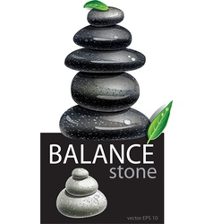 Balanced Zen stones vector image