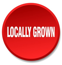 Locally grown red round flat isolated push button vector