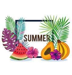 Tropical garden with banana and watermelon vector