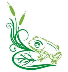 Frog reed green vector