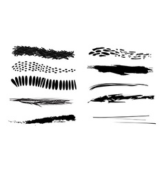Grunge brush vector