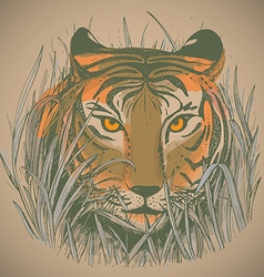 A tigers face in jungle grass vector
