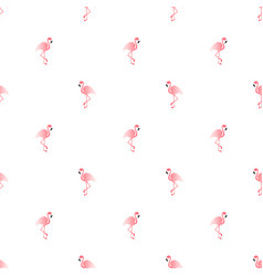 Pattern with pink flamingo exotic bird vector