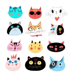 Collection different portraits of cats vector