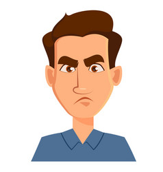 face expression of a man - dissatisfied angry vector image