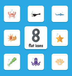 Flat icon nature set of tentacle fish conch and vector