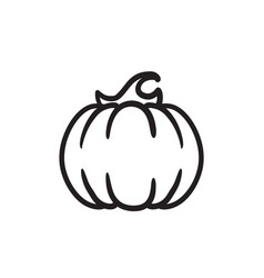 Pumpkin sketch icon vector