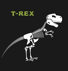 Skeleton tyrannosaurus rex bones and skull of vector