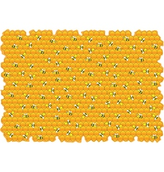 Bumble bees honey background vector