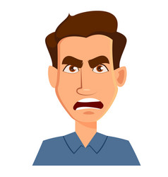face expression of a man - anger male emotions vector image