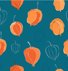Seamless pattern with physalis vector image