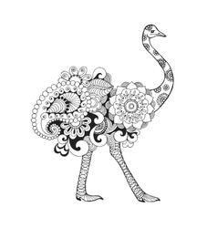 Ostrich bird vector image