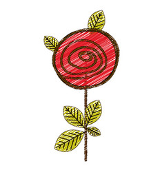 Color pencil drawing of button rose with leaves vector