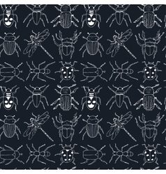 seamless pattern doodle sketch Bugs and beetles vector image vector image