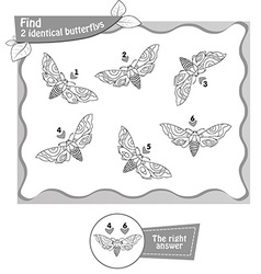 Find 2 identical butterflys black vector