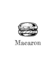 macaron vector image