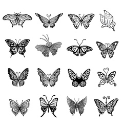Black butterfly logo set vector