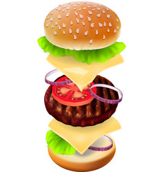 Hamburger - the view of every ingredient vector