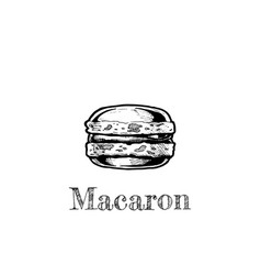 Macaron vector