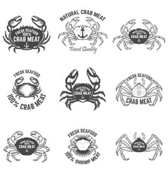 Set of crab meat labels fresh seafood design vector