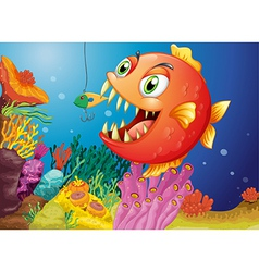 A piranha under the sea vector image vector image