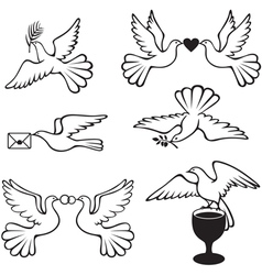 dove set vector image vector image