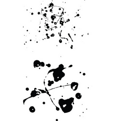 splats vector image