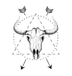 Skull of bull with horns vector