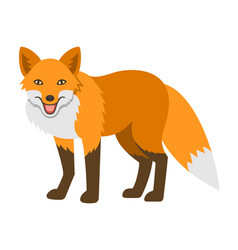 cute smiling red fox cartoon vector image
