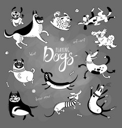 playing dogs funny lap-dog happy pug mongrels vector image vector image