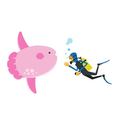 Scuba diving with sunfish vector