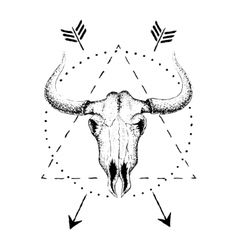 Skull of bull with horns vector