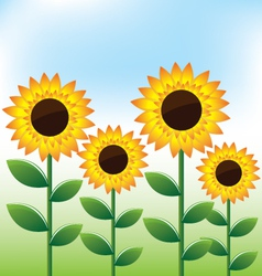 Sunflowers landscape background vector image vector image