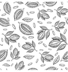 cocoa branch seamless pattern superfood vector image