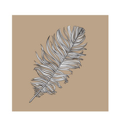 Hand drawn smoth black and white dove bird feather vector