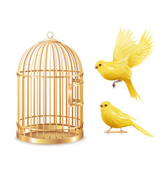 golden canary cage set vector image