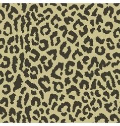 Eopard spots vector
