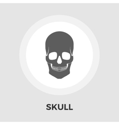 Anotomy skull flat icon vector image vector image