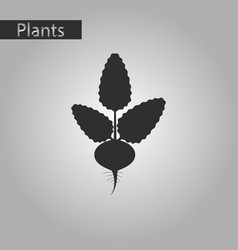 Black and white style icon of beet vector