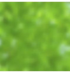 Blurred landscape nature background vector