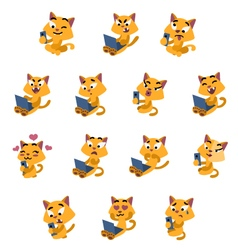 Yellow cats social life vector image