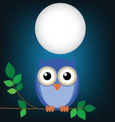 owl night vector image